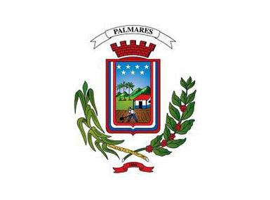 Municipalidad de Palmares costa rica